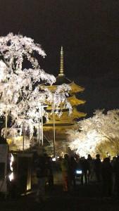 Toji at night